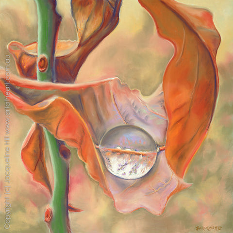"""Dewdrop II: Drought Relief"" by Jacqueline Hill, Limited Edition Fine Art Reproduction"
