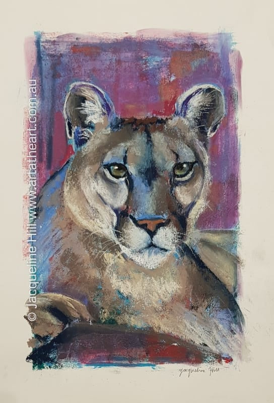 "DA243 ""Mountain Lion"" Original Framed Mixed Media Painting (acrylic and pastel) by Jacqueline Hill"