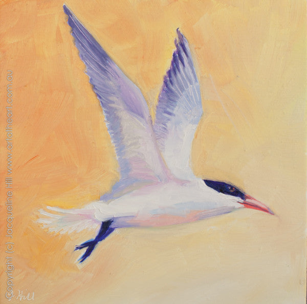 "DP067 ""Tern"" Original Oil on Canvas Panel Painting by Jacqueline Hill"