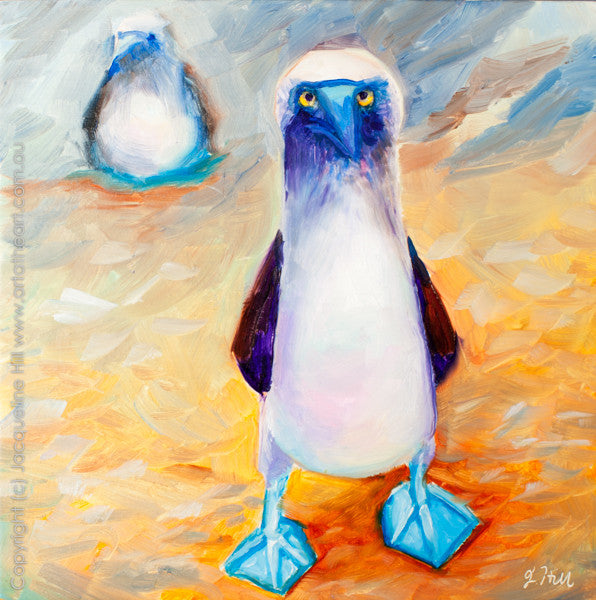 "DP061 ""Blue-Footed Booby"" Original Oil on Canvas Panel Painting by Jacqueline Hill"