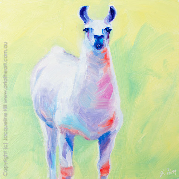 "DP056 ""Llama"" Original Oil on Canvas Panel Painting by Jacqueline Hill"