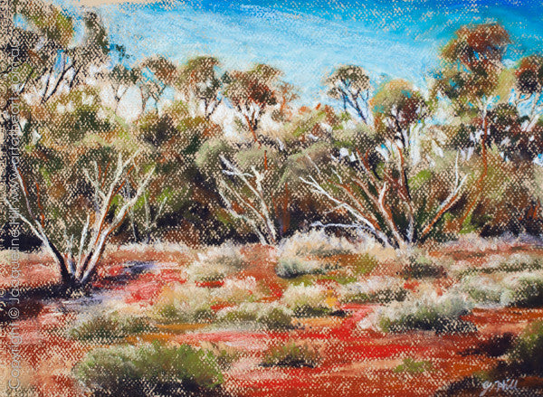 """My Australia"" Original Pastel by Jacqueline Hill [OR266] $390.00"