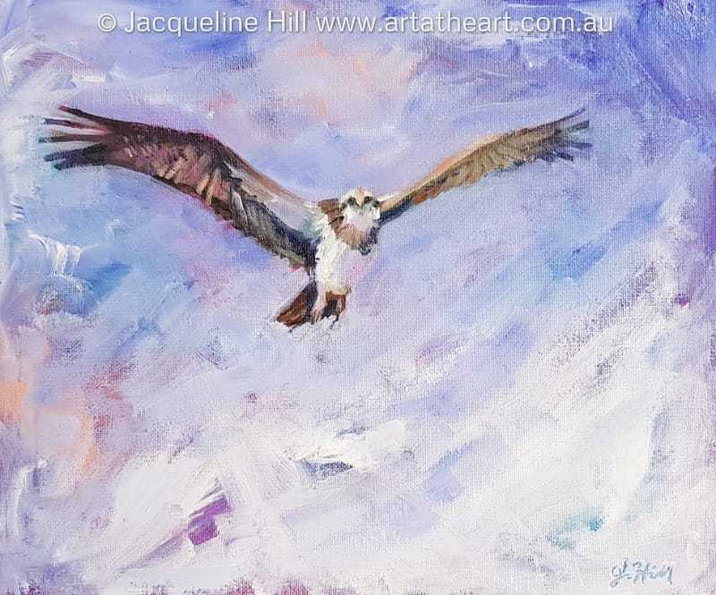 "DA199 ""Eagle Eye"" (Sea Eagle Osprey) Original Acrylic Painting by Jacqueline Hill"