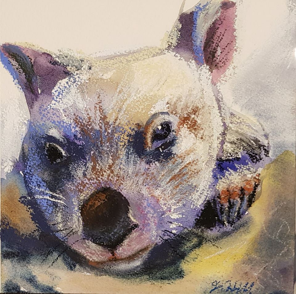 "DA106 ""Mr Willy"" Original Watercolour and Pastel by Jacqueline Hill"