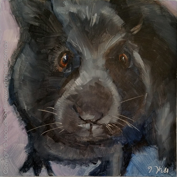 "DPE013 ""Toothless"" Original Oil on Panel Painting by Jacqueline Hill"