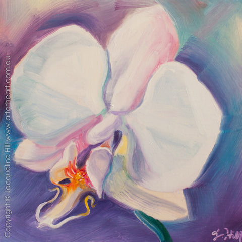 "DP297 ""Butterfly Orchid"" Original Oil on Panel Painting by Jacqueline Hill"