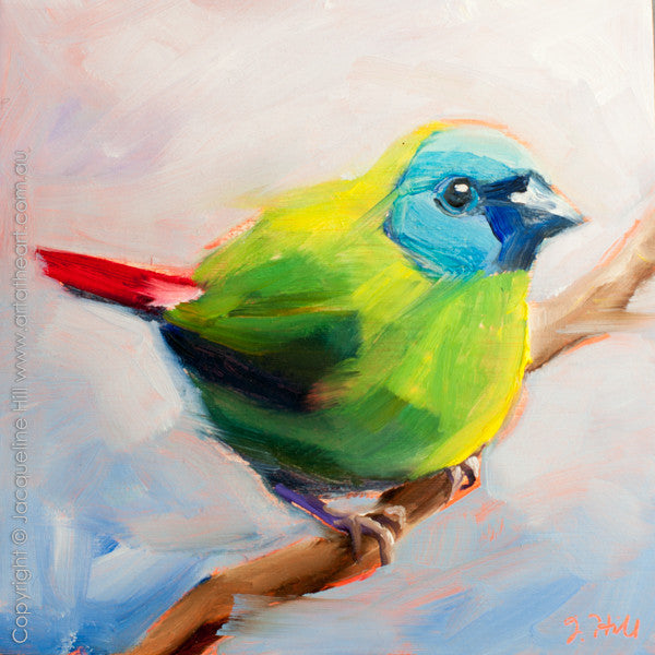 "DP201 ""Blue-Faced Parrot Finch"" Original Oil on Panel Painting by Jacqueline Hill"