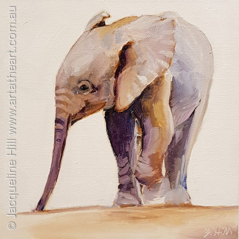"DA255 ""Baby Elephant"" Original Oil Painting apx 8x8"" / 20cm sq by Jacqueline Hill"