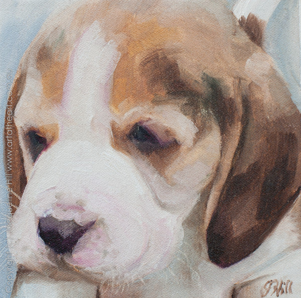 "DP006 ""Beagle Puppy"" Original Oil on Canvas Panel 6"" Painting by Jacqueline Hill"
