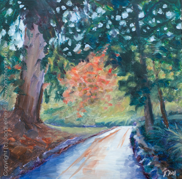 "DP017 ""Forest Road, Tasmania"" Original Oil on Panel Painting by Jacqueline Hill"