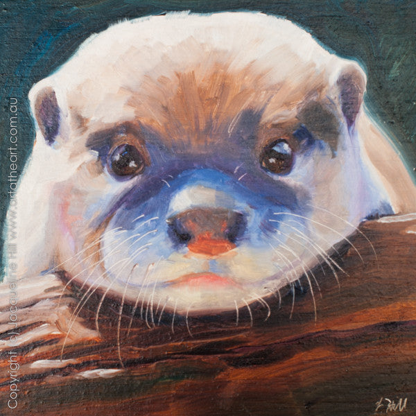 "DP029 ""Baby Otter"" Original Oil on Panel Painting by Jacqueline Hill"