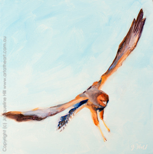 "DP040 ""Spotted Harrier"" Original Oil on Panel Painting by Jacqueline Hill"
