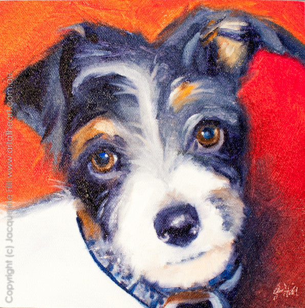 "DP048 ""Baxter"" Original Oil on Panel Painting by Jacqueline Hill"