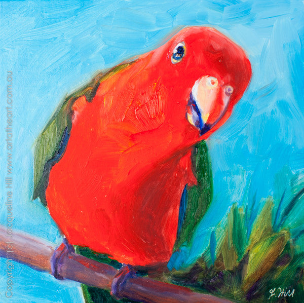 "DP051 ""King Parrot"" Original Oil on Panel Painting by Jacqueline Hill"