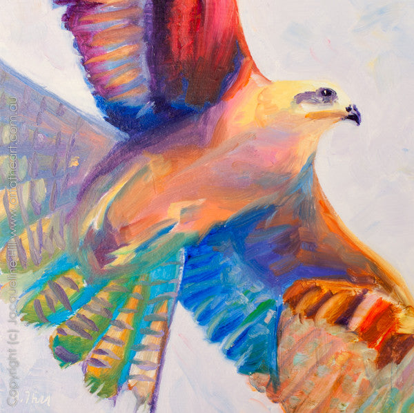 "DP052 ""Black Kite"" Original Oil on Panel Painting by Jacqueline Hill"