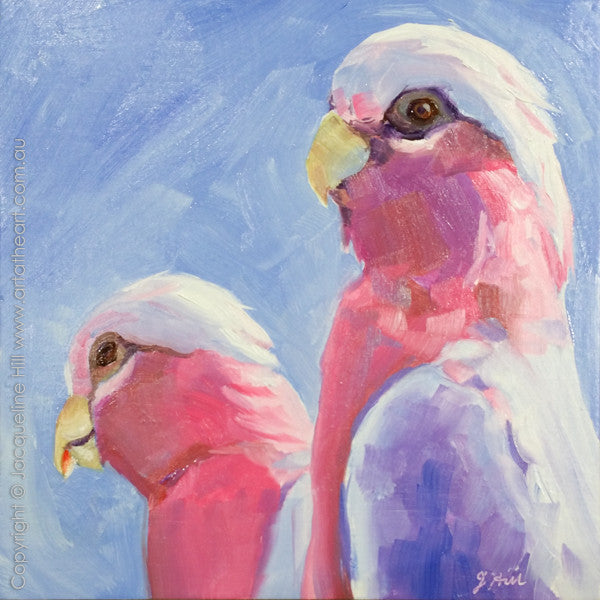 "DP099 ""Galahs"" Original Oil on Panel Painting by Jacqueline Hill"