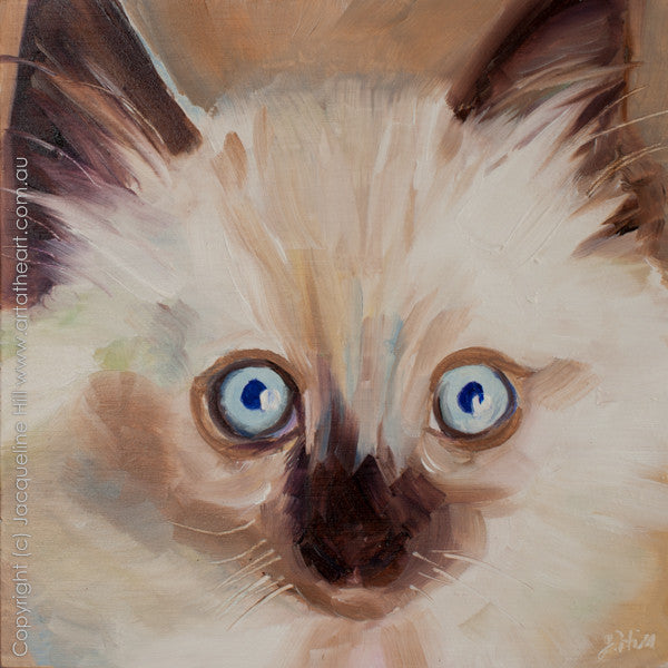 "DP106 ""Leo"" Original Oil on Panel Painting by Jacqueline Hill"