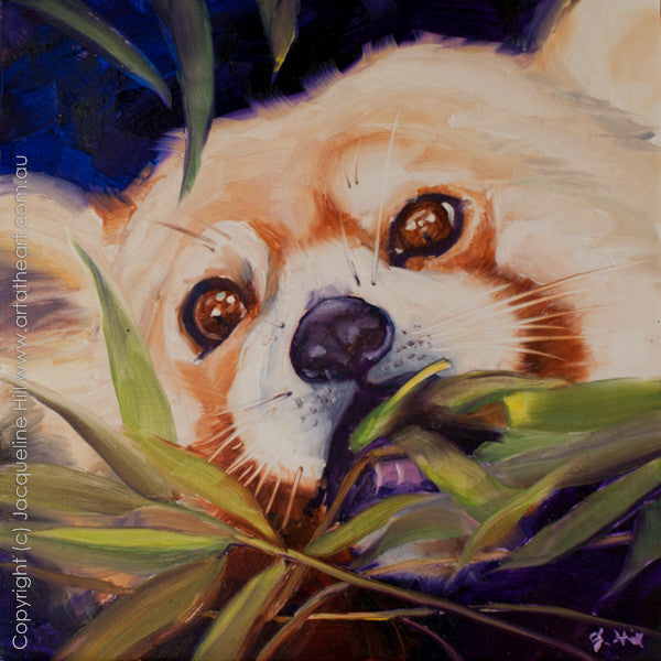 "DP109 ""Munch"" (Red Panda) Original Oil on Panel Painting by Jacqueline Hill"