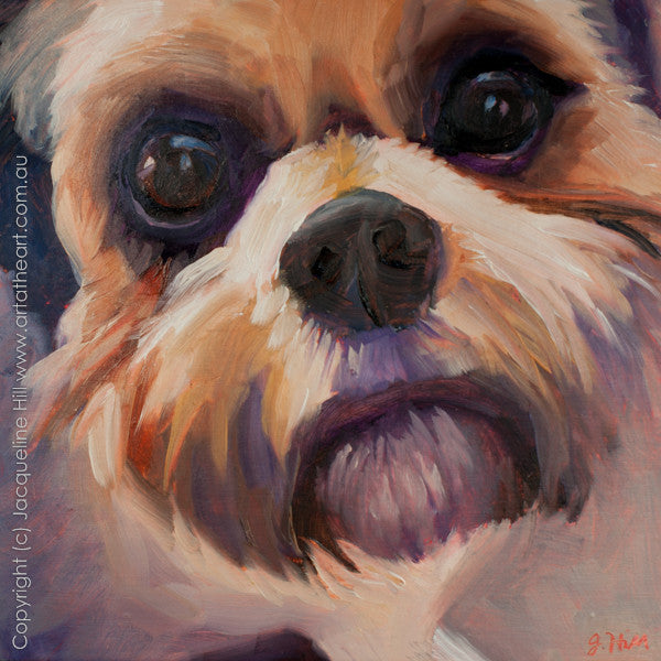 "DP136 ""Those Eyes"" (Oliver) Original Oil on Panel Painting by Jacqueline Hill"