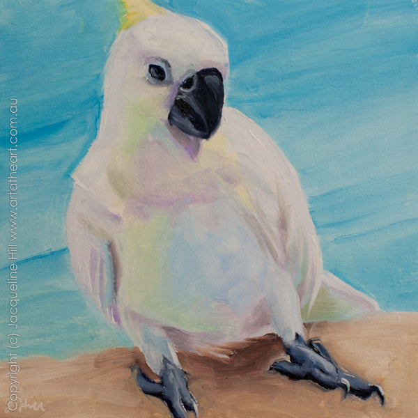 "DP143 ""Cocky Dance"" Original Oil on Panel Painting by Jacqueline Hill"