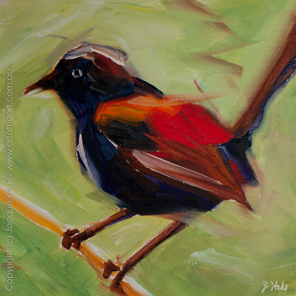 "DP144 ""Red-backed Wren"" Original Oil on Panel Painting by Jacqueline Hill"