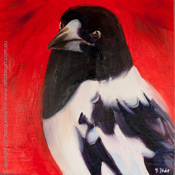 "DP148 ""Pied Butcherbird"" Original Oil on Panel Painting by Jacqueline Hill"