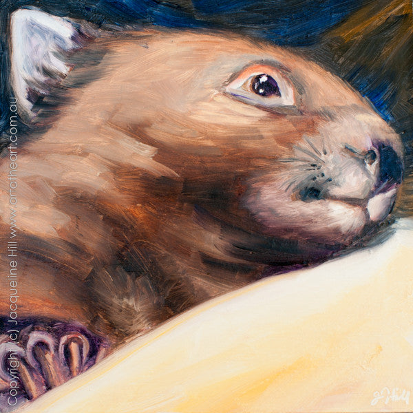 "DP187 ""Miss Maggie"" (Baby Wombat III) Original Oil on Panel Painting by Jacqueline Hill"