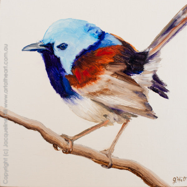 "DP189 ""Lovely Fairy Wren"" Original Oil on Panel Painting by Jacqueline Hill"