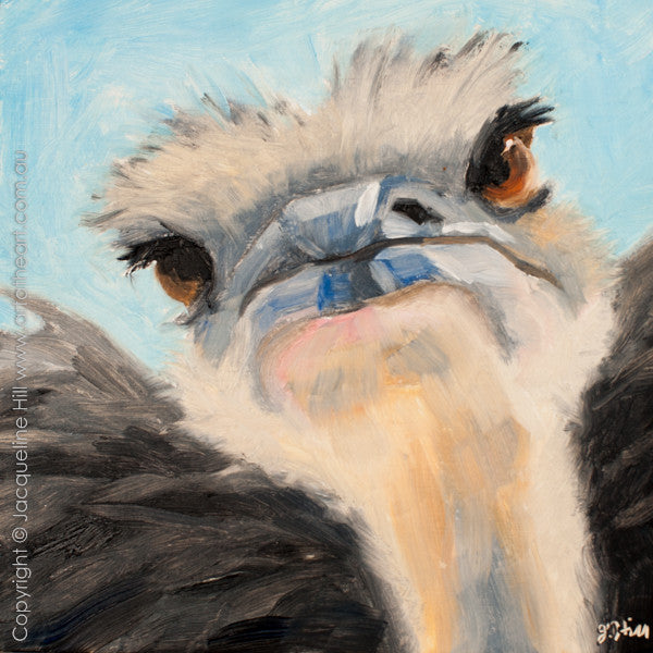 "DP195 ""Wotchoolookingat"" (Ostrich Face) Original Oil on Panel Painting by Jacqueline Hill"