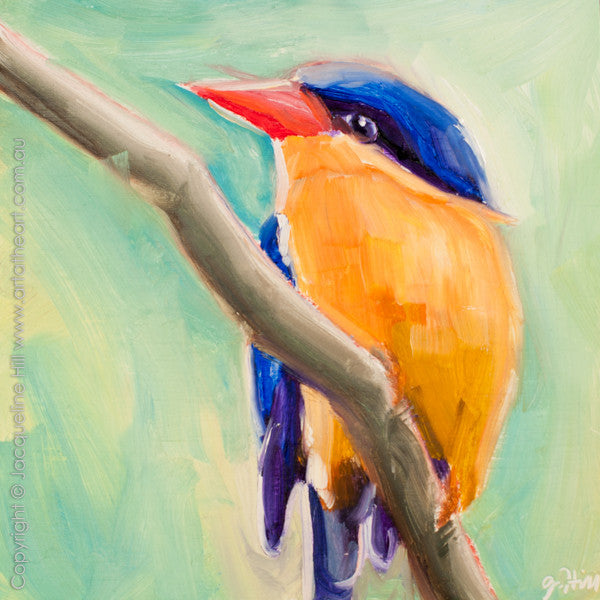 "DP200 ""Kingfisher"" (Buff-breasted Paradise) Original Oil on Panel Painting by Jacqueline Hill"