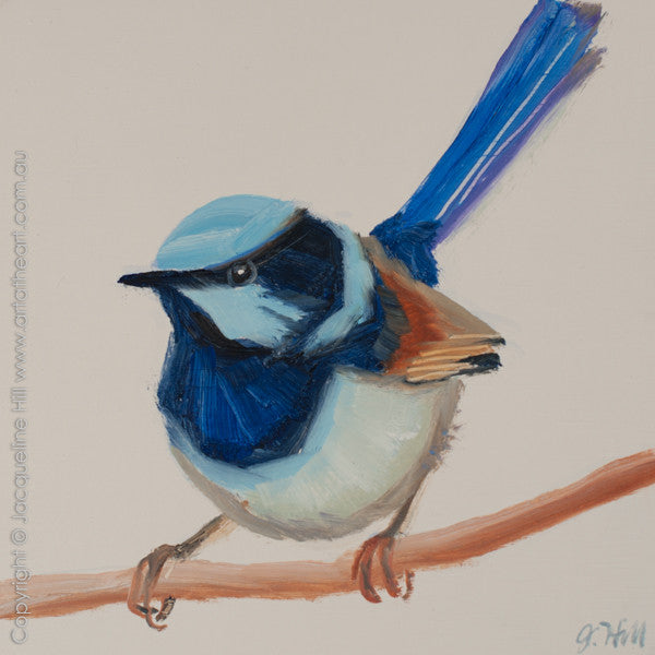 "DP264 ""Superb Fairy Wren II"" Original Oil on Panel Painting by Jacqueline Hill"