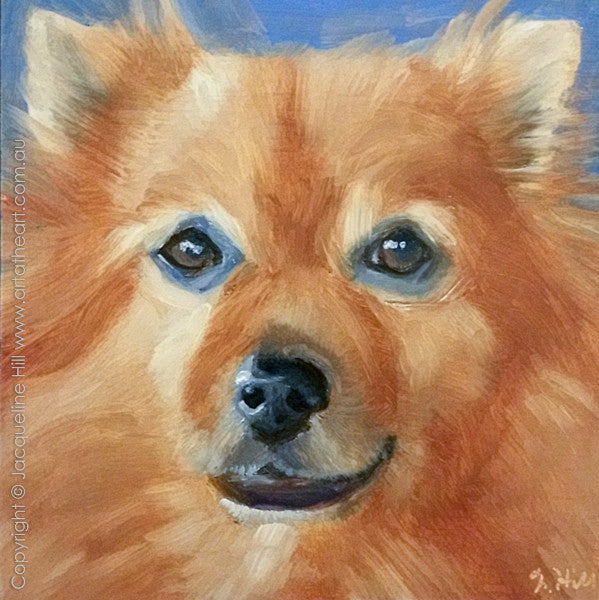 "DP267 ""Kimba"" Original Oil on Panel Painting by Jacqueline Hill"