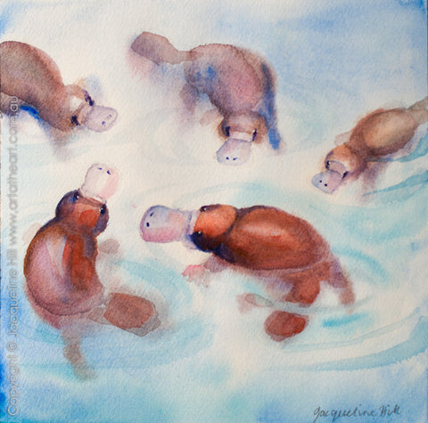"05 ""Five Platypus"" Original Watercolour Painting by Jacqueline Hill [OR287]"