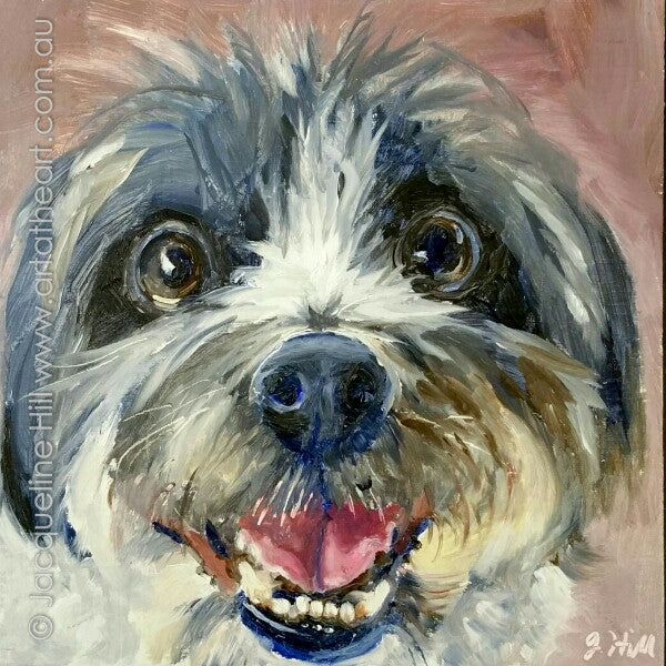 "DP350 ""Happy Max"" Original Oil on Panel Painting by Jacqueline Hill"