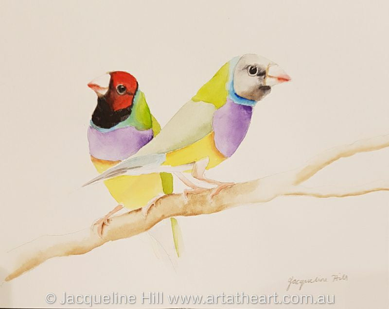 "DA152 ""Lady Gouldians"" Original Watercolour Painting by Jacqueline Hill"