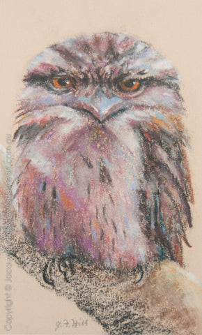 """Gilbert (Tawny Frogmouth Owl)"" Original Pastel Painting by Jacqueline Hill [OR269]"