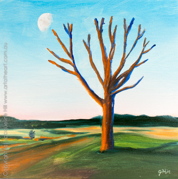 "DP088 ""Sunset Tree"" Original Oil on Canvas Panel Painting by Jacqueline Hill"