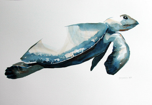"""Turtle V"" Original Watercolour Painting by Jacqueline Hill [OR019]"