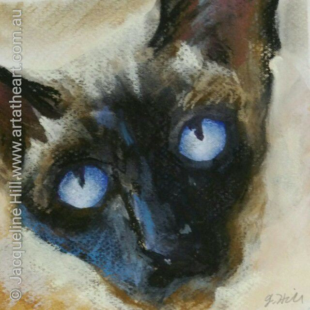 "DA054 ""Siam Eyes"" Original Watercolour & Pastel Painting apx 6x6"" / 15cm sq by Jacqueline Hill"