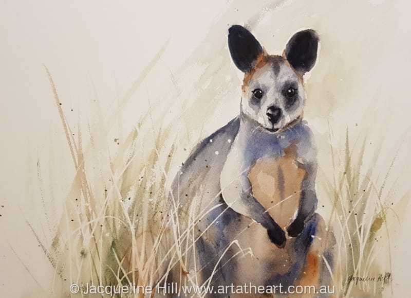 "DA142 ""Wallaby on the Lookout"" Original Watercolour Painting apx 26x36cm by Jacqueline Hill"
