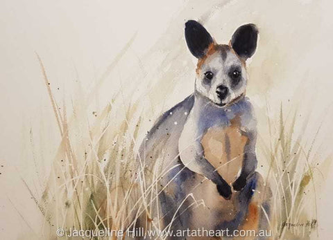 "DA142 ""Wallaby on the Lookout"" Original Watercolour Painting by Jacqueline Hill"