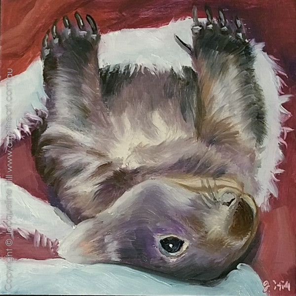 "DP274 ""Mr Jinx Turns Around"" (Wombat Vo) Original Oil on Panel Painting by Jacqueline Hill"