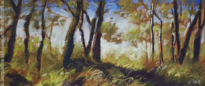 "DA105 ""Through the Trees"" Original Pastel apx 27x12cm sq by Jacqueline Hill"