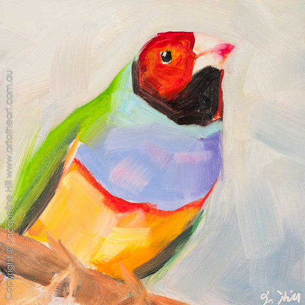 "DP256 ""Lady Gouldian's Boy"" Original Oil on Panel Painting by Jacqueline Hill"
