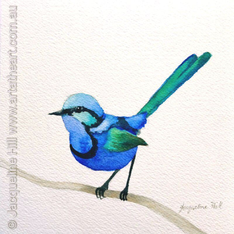 "DA080 ""Mr Splendiforous"" Original Watercolour Painting apx 6x6"" / 15cm sq by Jacqueline Hill"