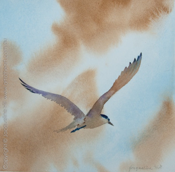 """Tern I"" Original Watercolour Painting by Jacqueline Hill [OR193]"