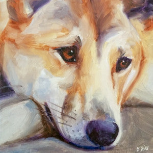 "DPE004 ""Dingo III"" Original Oil on Panel Painting by Jacqueline Hill"