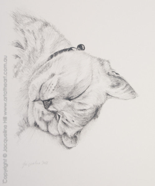 """Smokey Prince of Cats"" Original Graphite Artwork by Jacqueline Hill [OR297]"