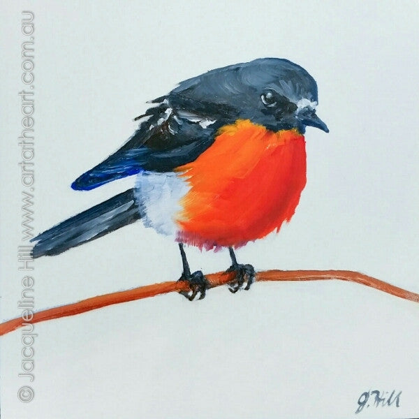 "DP360 ""Fluff n Flame"" (Scarlet Robin II) Original Oil on Panel Painting by Jacqueline Hill"