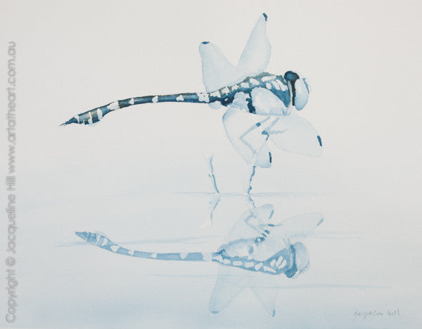 """Dragonfly"" Original Watercolour Painting by Jacqueline Hill [OR238]"